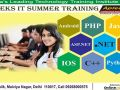 best-6-weeks-it-summer-training-aptech-malviya-nagar