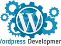 wordpress-website-developers-surat-ibl-infotech