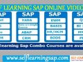 -learn-any-sap-courses-video-039-s-available-in-self-