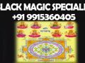 -famous-astrologer-in-world-9915360405